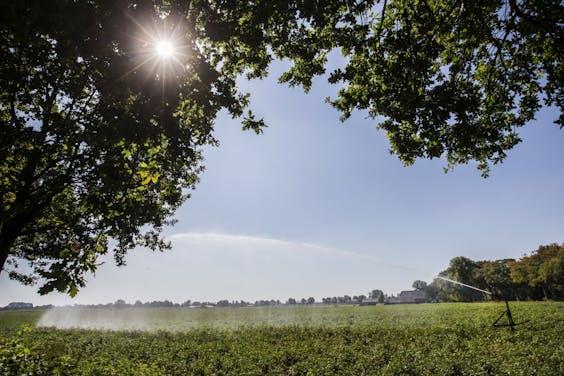 Biologische landbouw is niet altijd goed voor het milieu, blijkt uit Brits onderzoek.