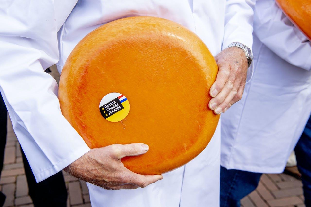 Keurmeesters halen een stuk kaas uit de kazen tijdens de grote finale kaaskeuring tijdens de Gouda Cheese Awards.
