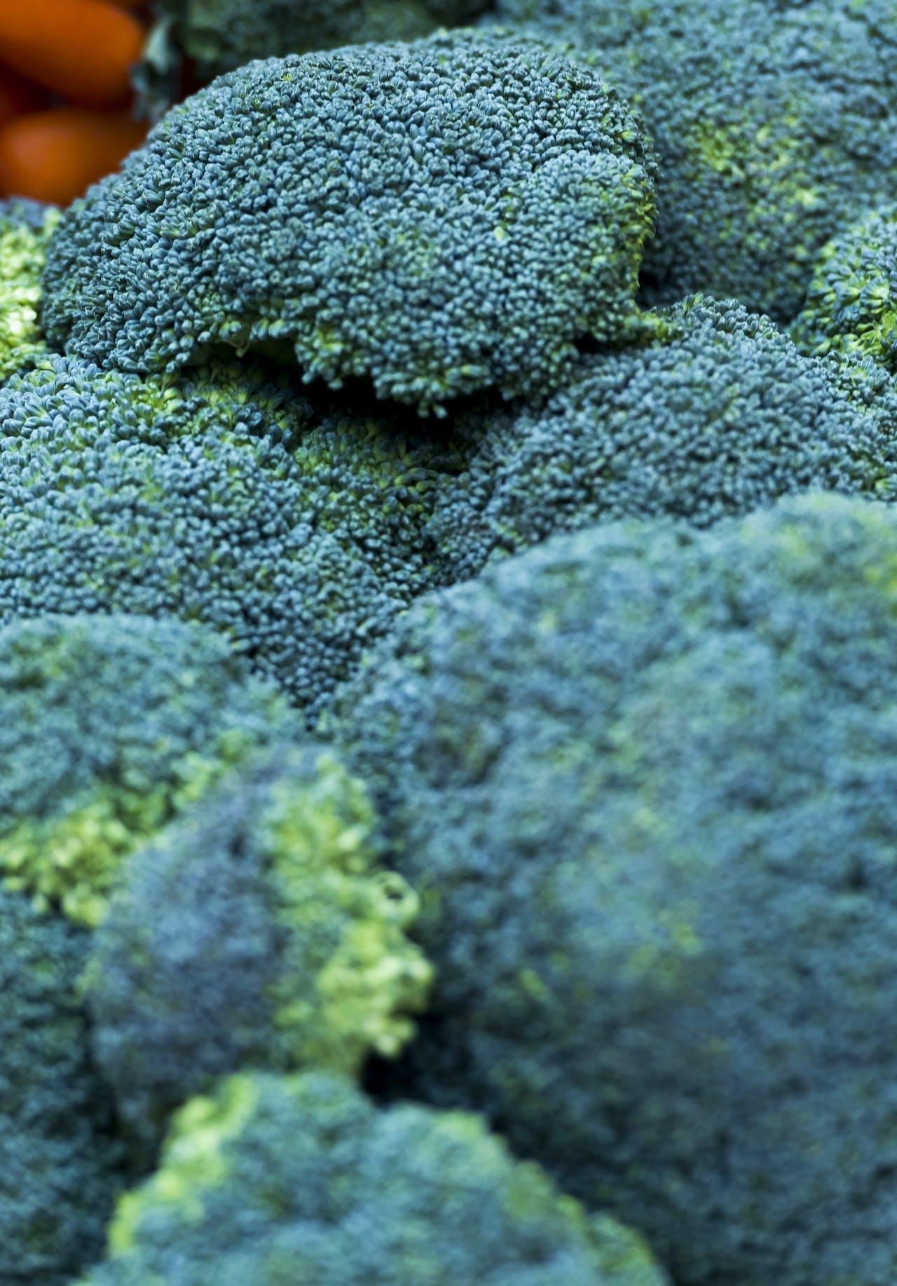 2015-03-26 09:19:36 ROTTERDAM - Broccoli tijdens het groentecongres. Het congres, een gezamenlijk evenement van de zorgsector en de groente en fruitsector, staat in het teken van het belang van groente voor een gezonde leefstijl. ANP XTRA LEX VAN LIESHOUT